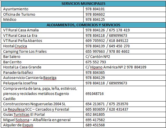 Directorio_Telefónico_servicios